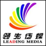 山西领先大屏文化传媒有限公司